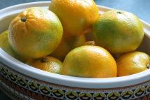 Sour oranges