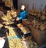 Got Gourds?