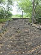 Lava Path