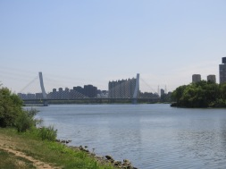Fumin Bridge
