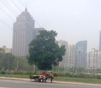 That is Shenyang