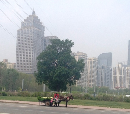 That is Shenyang